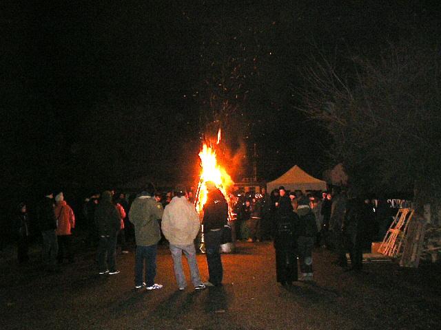 pignarul 2010